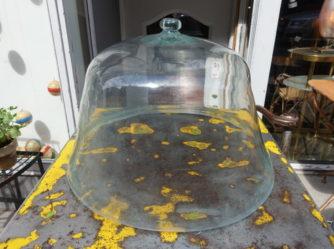 Large Bell Jar / Cloche