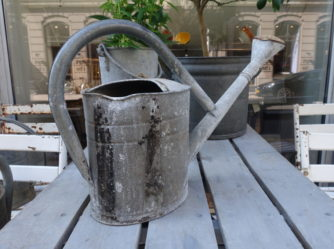 Watering Can with Shower Head